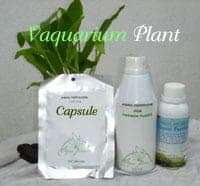 plant fertilizer 1