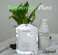 plant fertilizer 2
