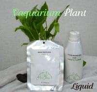 plant fertilizer 2